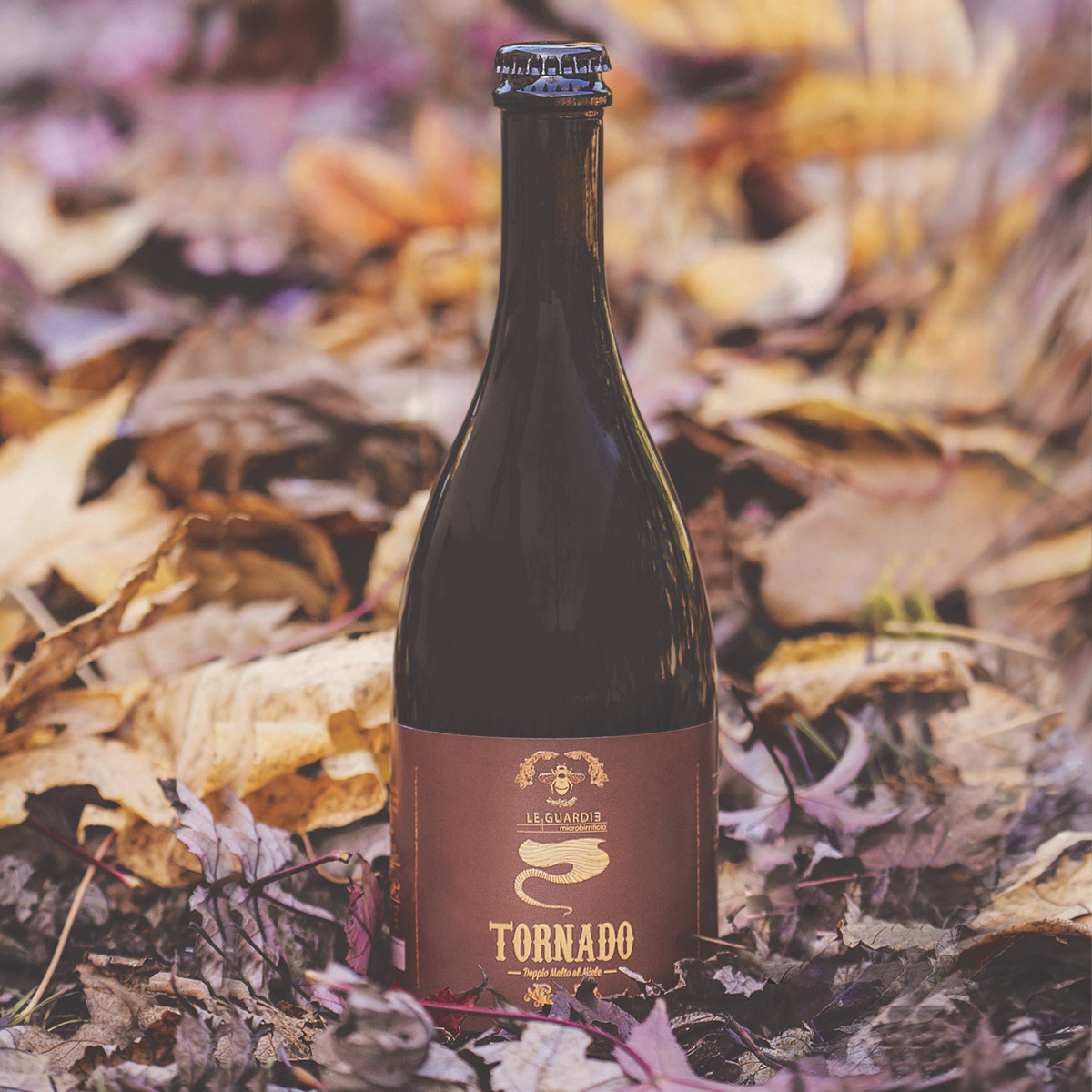 Birra artigianale al miele Sapori terra Umbra